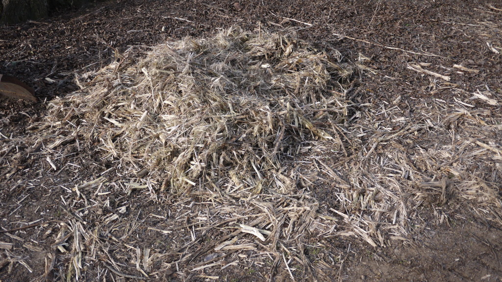 finely chopped corn stalks for compost