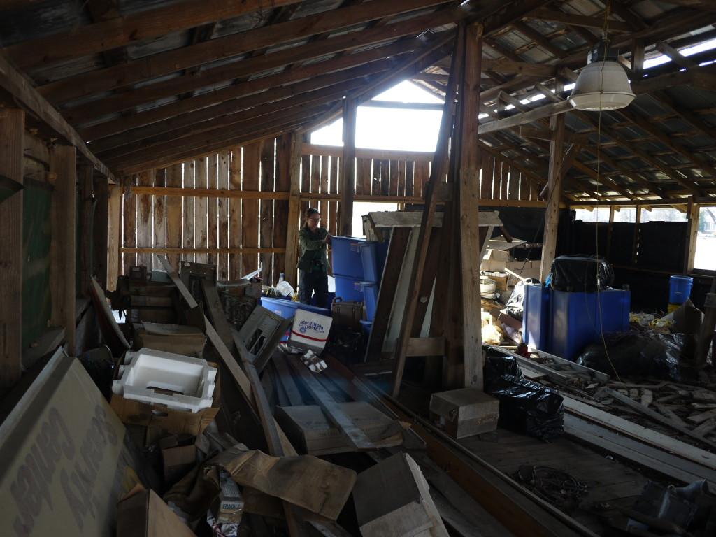scavenging in the Tool Barn hay loft