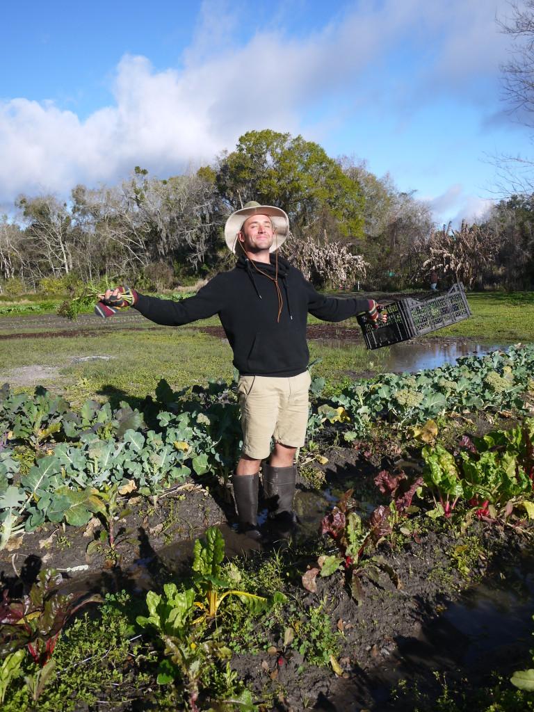 Alex: J Crew Farmer