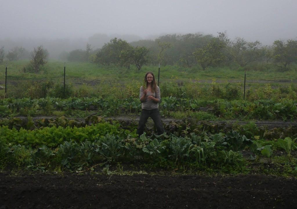 Kristin honeymoon farmin' in Florida