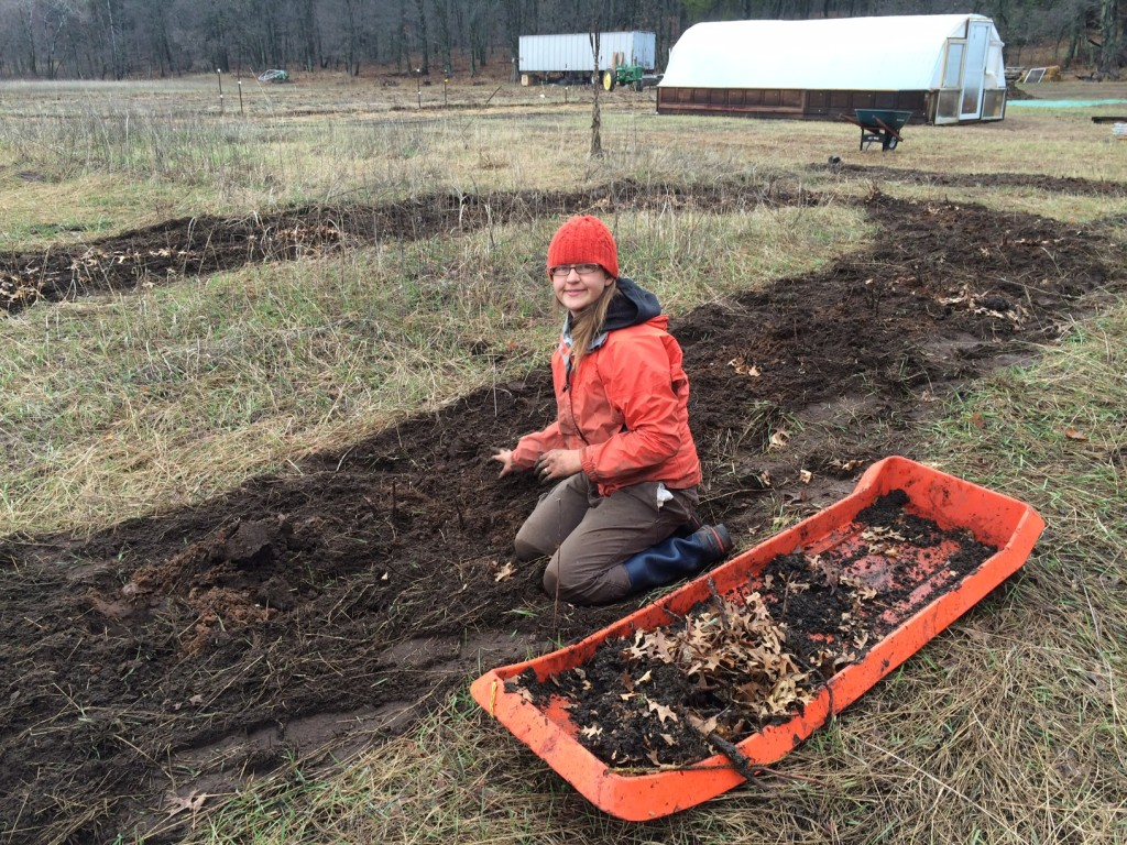 planting hundreds of free raspberry bushes (thanks to the late Afton Raspberry Company!)