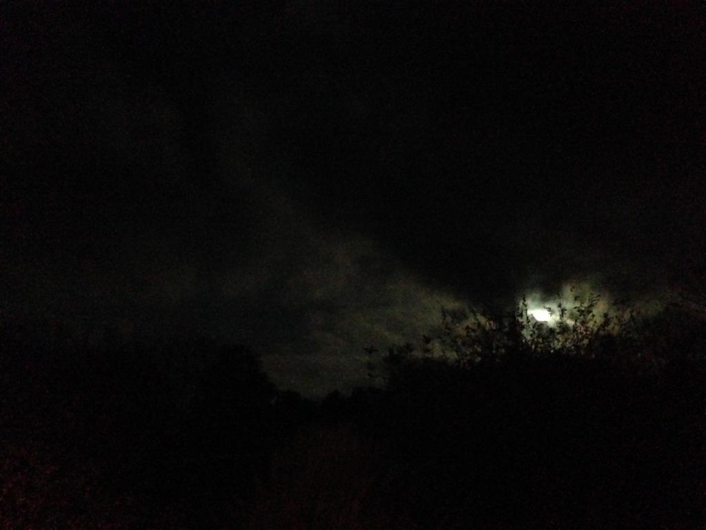 full moon over Yokna Bottoms Farm