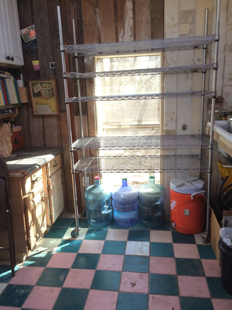 the newly-cleaned and organized tiny kitchen, ready for seed trays