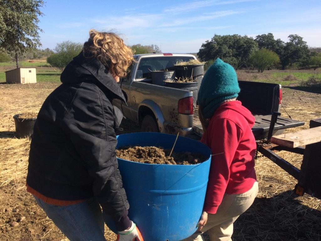 Ali & Kristin scavenging free manure