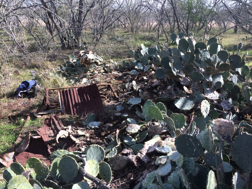 """Homestead #2"" required us to chop down a thick stand of cacti to get to ... prickly work"