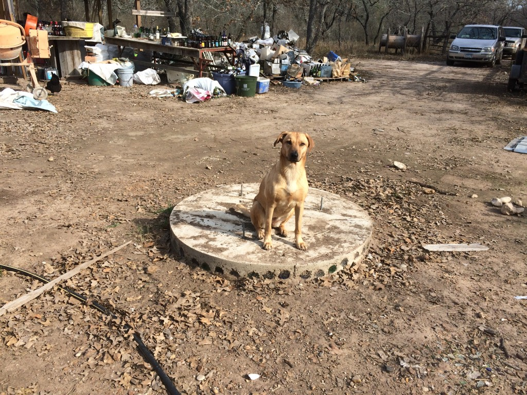 Lily posing on the tower foundation - the 3 spools can be seen in the background where we rolled them away post-demo