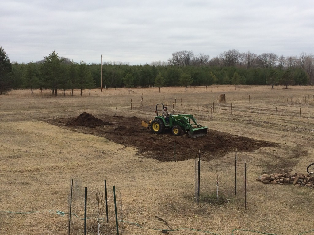 Neighbor Dave doing some tractormancy on a pile of aged horse manure, to prepare the soil for the new high tunnel greenhouse