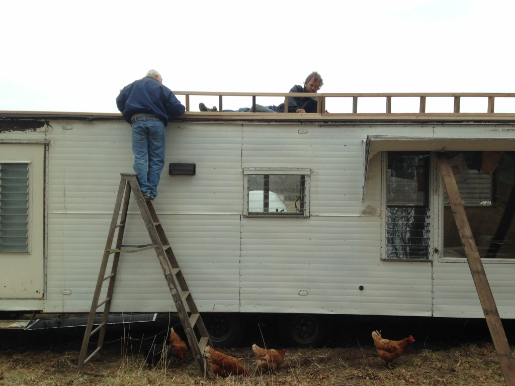 chickens considering free-ranging right up the ladder with Jim