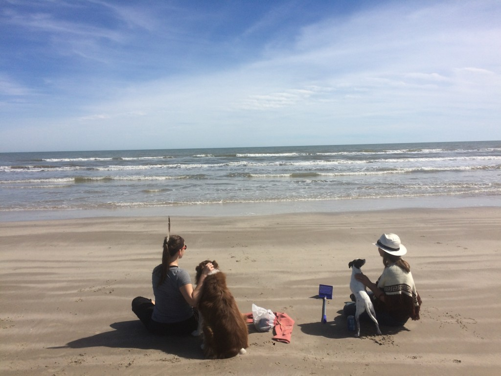 our MN friend Lizzy was visiting nearby Corpus Christi, and showed us a great beach