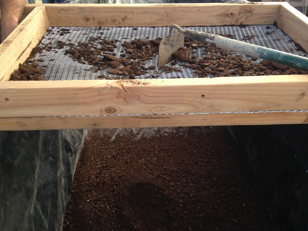 sifting soil for the growbed