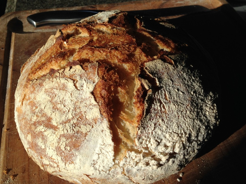one of several loaves of sourdough that Kristin made