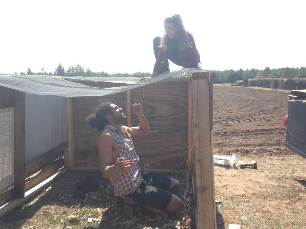 Nora & B help build a second chicken coop to house the 14 free craigslist hens we added to the flock in April