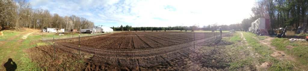 freshly-tilled and ready to rock!