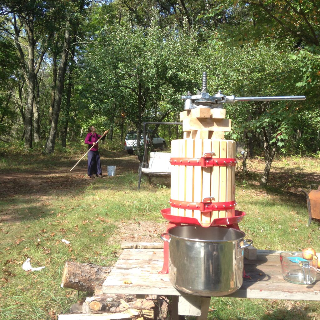 Kristin harvesting apples while Gabe juices a different batch