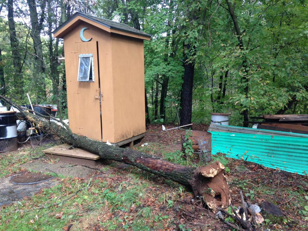 wind and rain took this tree out - and very nearly our outhouse