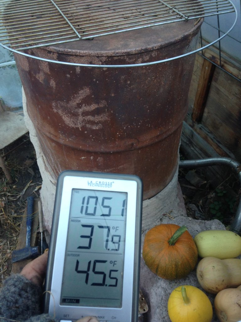 outside, temps fell from 36 to 24 degrees overnight - but in the greenhouse, the low was 45 on the rocket heater bench, and 37 on the opposite side ... saving all our onions, scallions, and hundreds of squash from icy doom