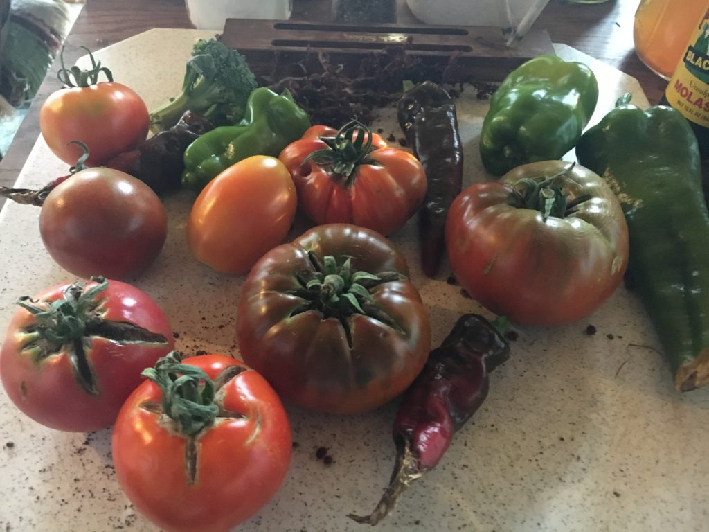 we get to eat the ' ugly' & damaged tomatoes